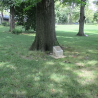 77th INF DIV AEF WWI Memorial Trees Central Park NYC.JPG