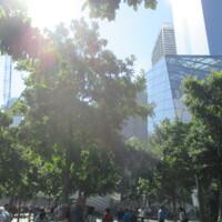 NYC 911 Memorial Square19.JPG